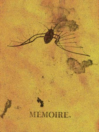 Historique, résumé conception-MEMOIRE  Banque d'images - 246033