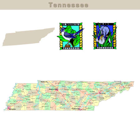 USA states series: Tennessee. Political map with counties, roads, states contour, bird and flower photo