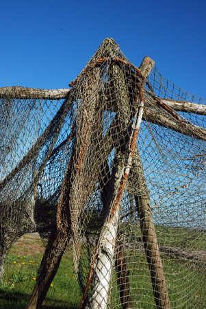 Drying fishermans net photo
