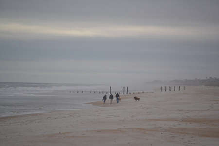 blustery: Family Walking Dogs on Beach - Blustery Day