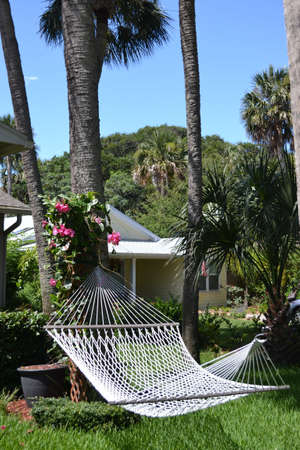 Backyard Hammock in Tropics photo