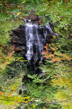 appalachian: Appalachian Waterfall-1