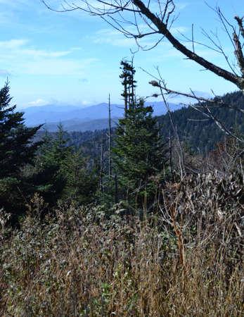 appalachian: Appalachian Mountain Scene