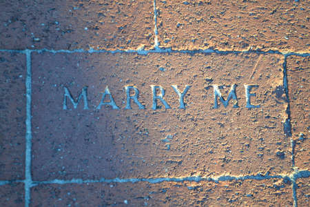 The Proposal Brick  (It Says--MARRY ME) Imagens