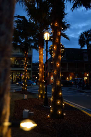 augustine: Palm Trees in St. Augustine, Florida during the annual Nights of Lights at the Christmas holiday Season. Stock Photo