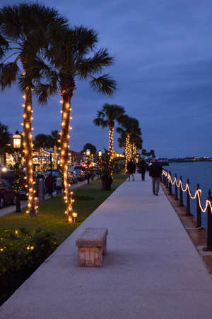 Palm Trees Lit Up For Christmas Imagens