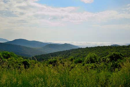 Shenandoah National Park - Mountain Scene - 04