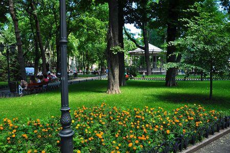 オデッサ中央シティ ガーデン