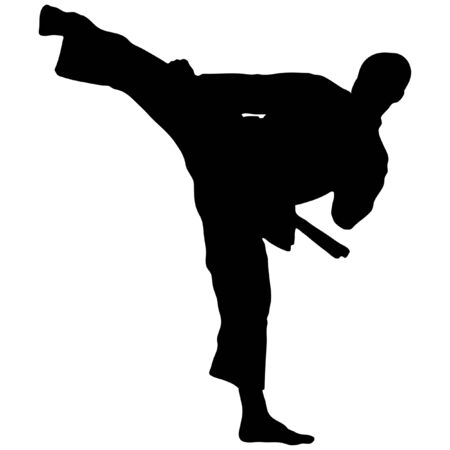 sambo: KARATE KICK Illustration