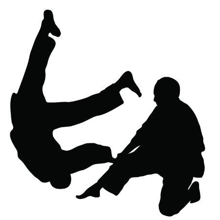Fighting arts AIKIDO photo
