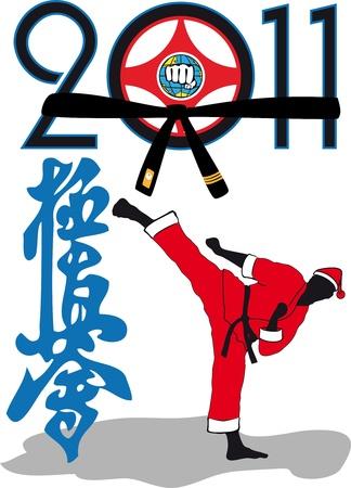 kyokushinkai: Karate kyokushinkai -Martial art in New Year . The fighter in red kimono