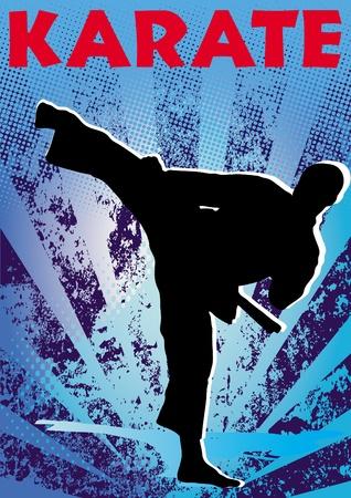 Karate poster. martial arts colored emblem, symbol. Karate style. Japan, Korea, Okinawa, China, Brazil, USA.Vector .