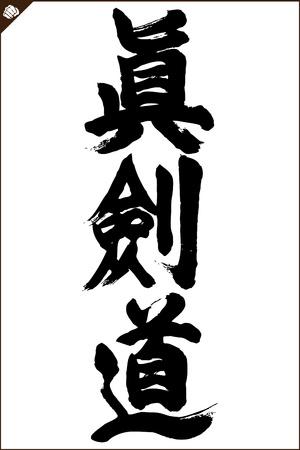 ju jutsu: shinkendo