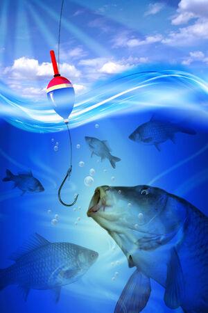 Vishaak, bobber en vis crucian in diep blauw groen water meer Witte papier frame Stockfoto