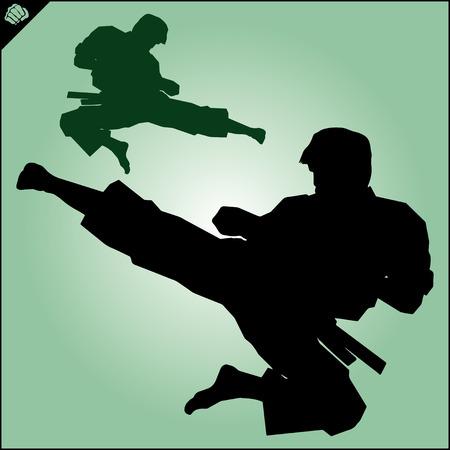 kudo: Karate. Taekwon-do. Kung-fu. High kick. MARTIAL ARTS. Note to editor: