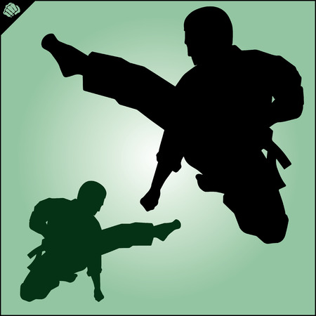 Karate. Taekwon-do. Kung-fu. High kick. MARTIAL ARTS. Note to editor: