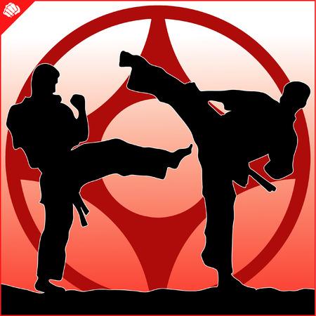 dan: Fighting combat. Fighter in kimono, dogi taekwondo, hapkido