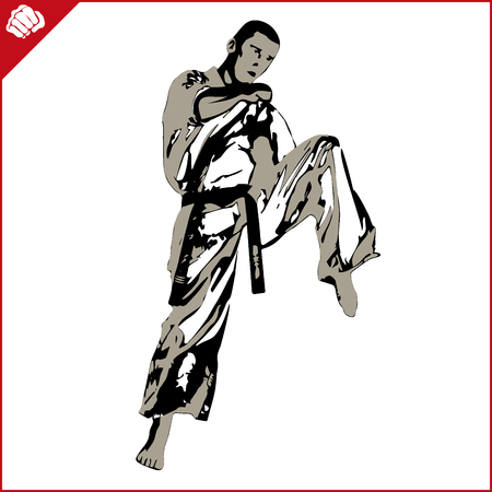 kyokushinkai: Martial arts. Karate woman fighter silhouette scene. Vector. EPS. Illustration