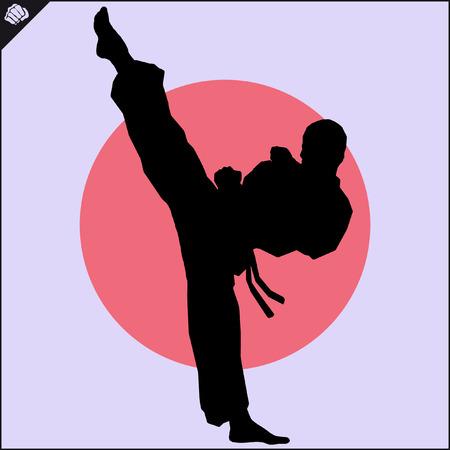 Martial arts. Karate fighters high kick scene.