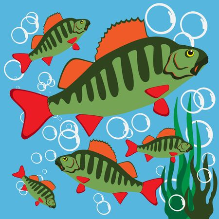 Beautiful Fish. Pattern Fishing. Beautiful summer hobby. Vector poster. 스톡 콘텐츠 - 130663171