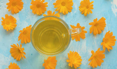 Close-up glass mug of calendula tisane on blue background. Calendula flowers on the table. Herbal medicine concept. Top view 免版税图像