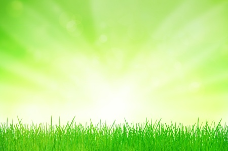 green abstract background: background Stock Photo