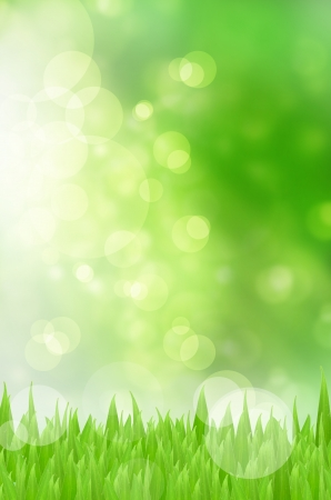 defocus: Spring nature background with grass and bokeh lights  Blue sky Stock Photo