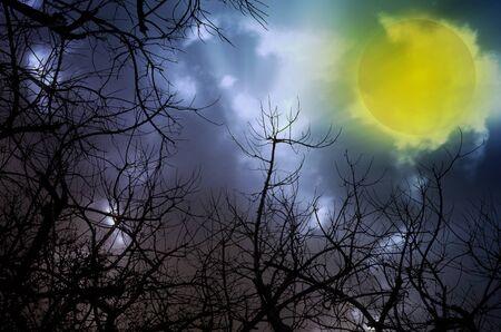 moonlit: dark moon