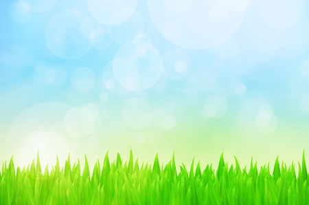 Spring nature background with grass and bokeh lights  Blue sky Stock Photo - 12751825
