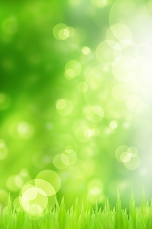 Spring nature background with grass and bokeh lights  photo