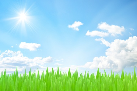 fleecy: Green field beautiful and sky blue with white cloud spring daylight