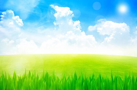 Green field and sky blue with white cloud background Stock Photo - 12927612