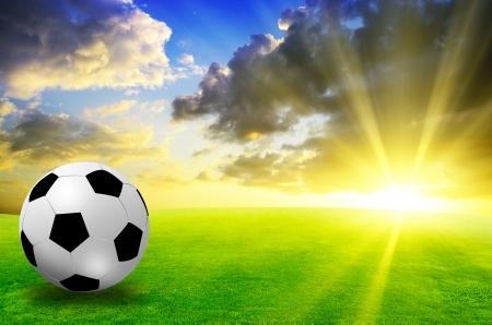 football field soccer stadium on the green grass blue sky