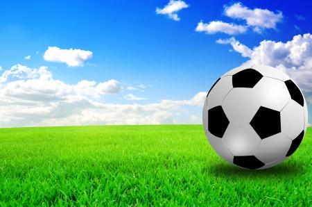 voetbalveld voetbalstadion op het groene gras blauwe lucht Stockfoto