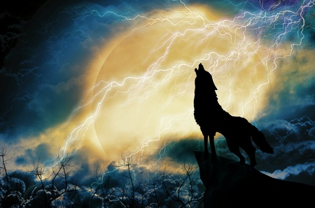 howl: wolf in silhouette howling to thunderstorm Stock Photo