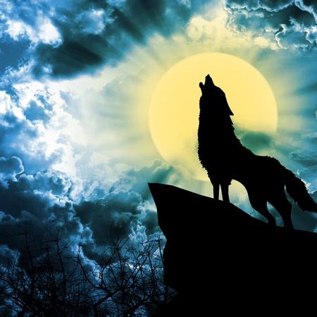 14924941-loup-hurlant-a-la-silhouette-de-la-pleine-lune.jpg