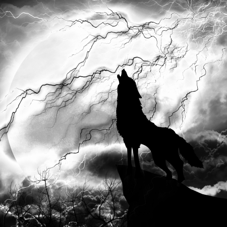 wolf in silhouette howling to thunderstorm Stock Photo