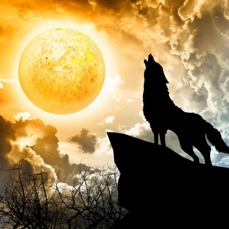 lobo: lobo aullando a la silueta de la luna llena