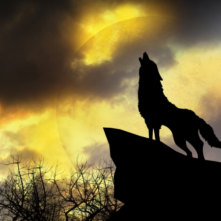 black and white wolf: wolf in silhouette howling to the full moon