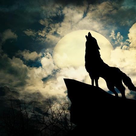 the wolf: lupo in silhouette che urla alla luna piena Archivio Fotografico