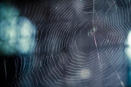 darkness: The Spider Web closeup in a darkness Stock Photo
