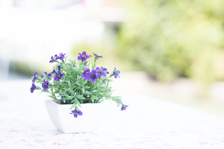 Bouquet of beautiful spring flowers Standard-Bild
