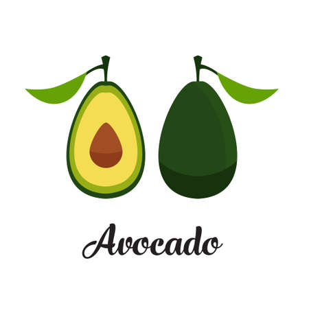 Vector editable avocado Illustration