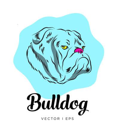 Dibujo colorido editable de vector que representa una cabeza de perro bulldog inglés.