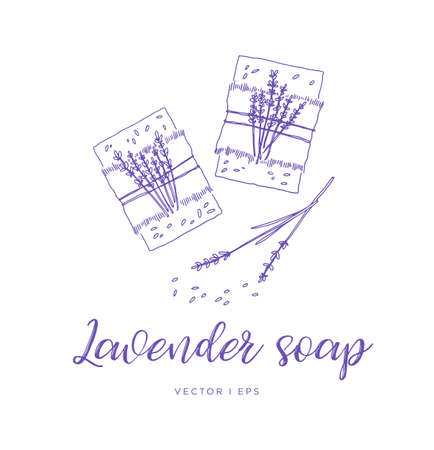 Hand drawn vector illustration of the homemade lavender soap, line sketch.