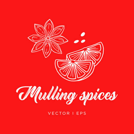 Hand drawn outline detailed illustration mulling spices for hot wine. Anise star and an orange.