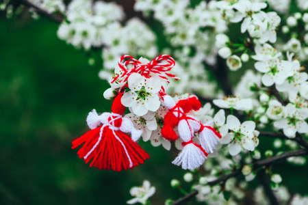 Bulgarian traditional spring decor martenitsa on the blossom tree background. Baba Marta holiday. 免版税图像