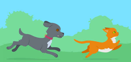 Cat running from dog through the lawn. Flat style illustration.