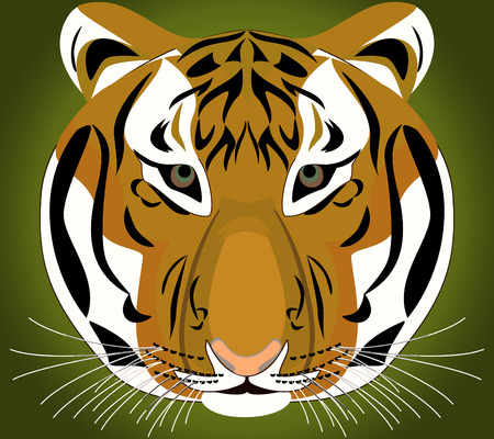 Tiger. Object isolated - closeup. Vector print. Illustration