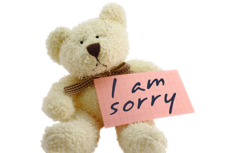 i am sorry: Front view of teddy bear toy with